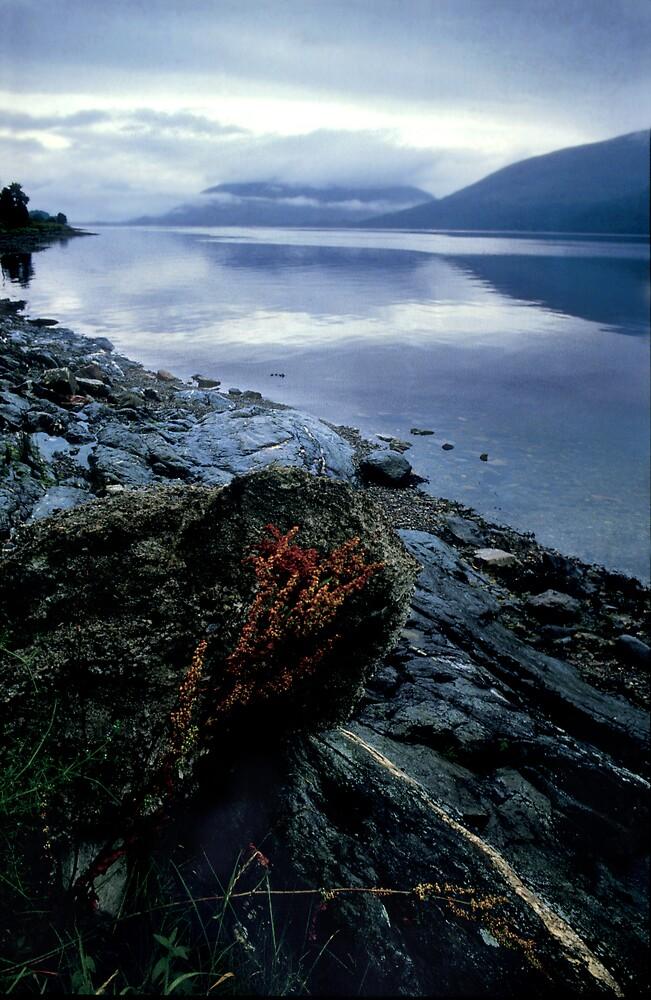 Loch Etive by Stephen Jackson