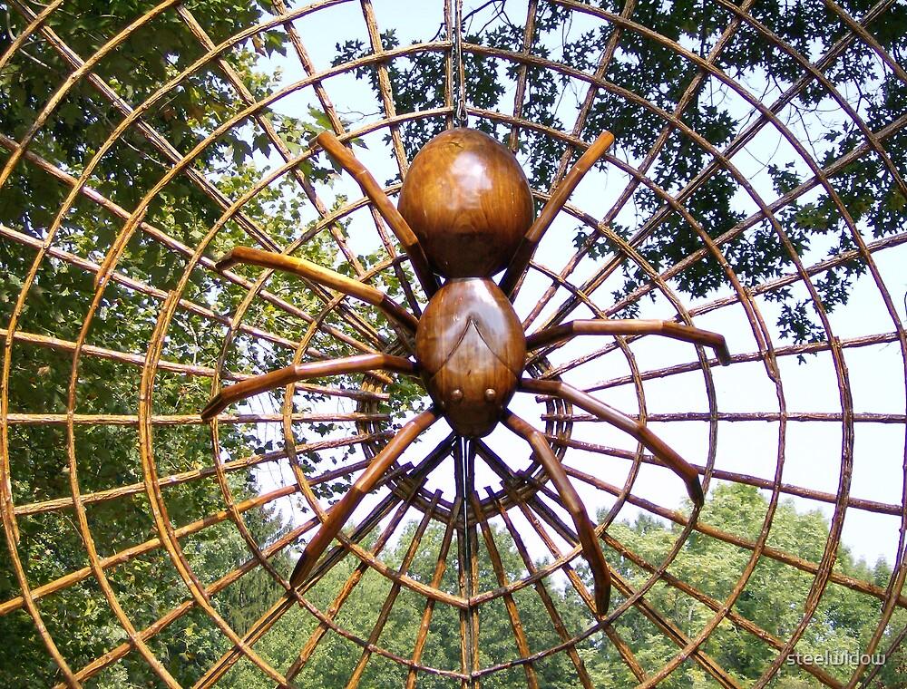 Spider by steelwidow