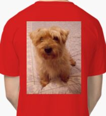 DOG, Cute Dogs, 'Harvey', Cairn Terrier Cross, K9, Canine Classic T-Shirt