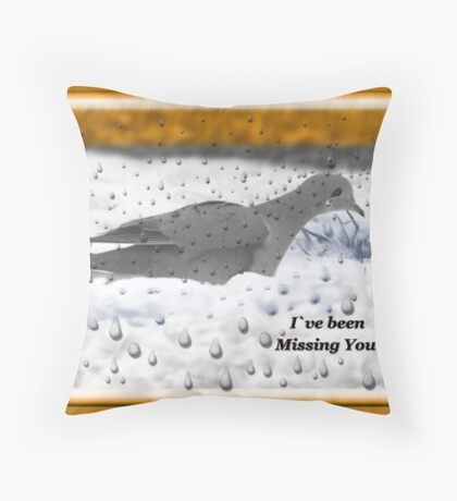 I`ve Been Missing You!!! Throw Pillow