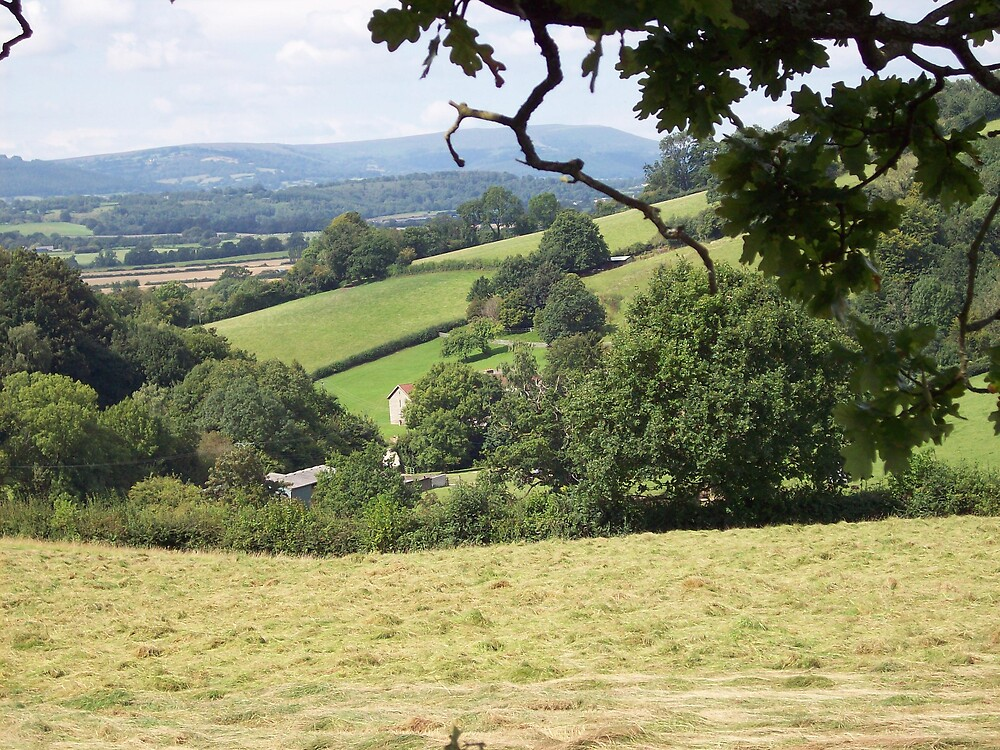 Usk view 2 by louise158