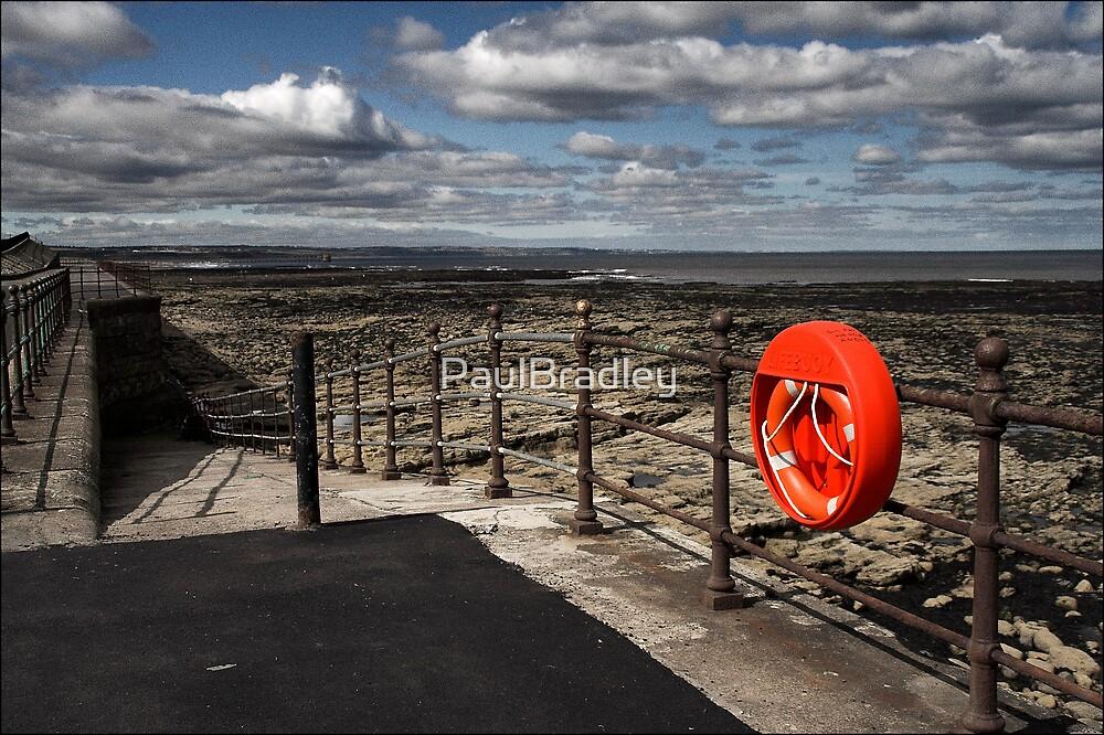 Lifebelt by PaulBradley