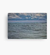 Cormorants Over Lake Erie Canvas Print