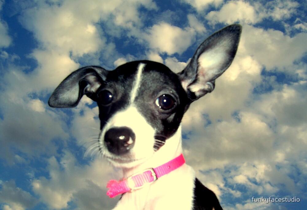 Phoebe in the sky by funkyfacestudio