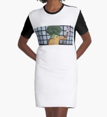 Broccolee Graphic T-Shirt Dress