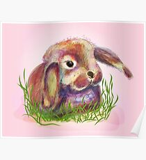 cute bunny in grass Poster
