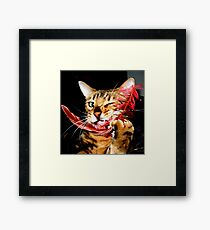 Zen Playing With A Feather Framed Print