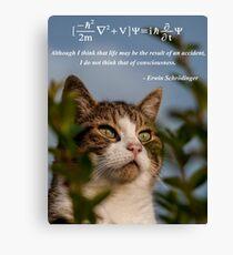 Schrödinger Cat Canvas Print