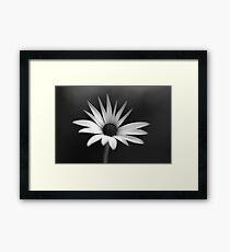 BW Flower Framed Print
