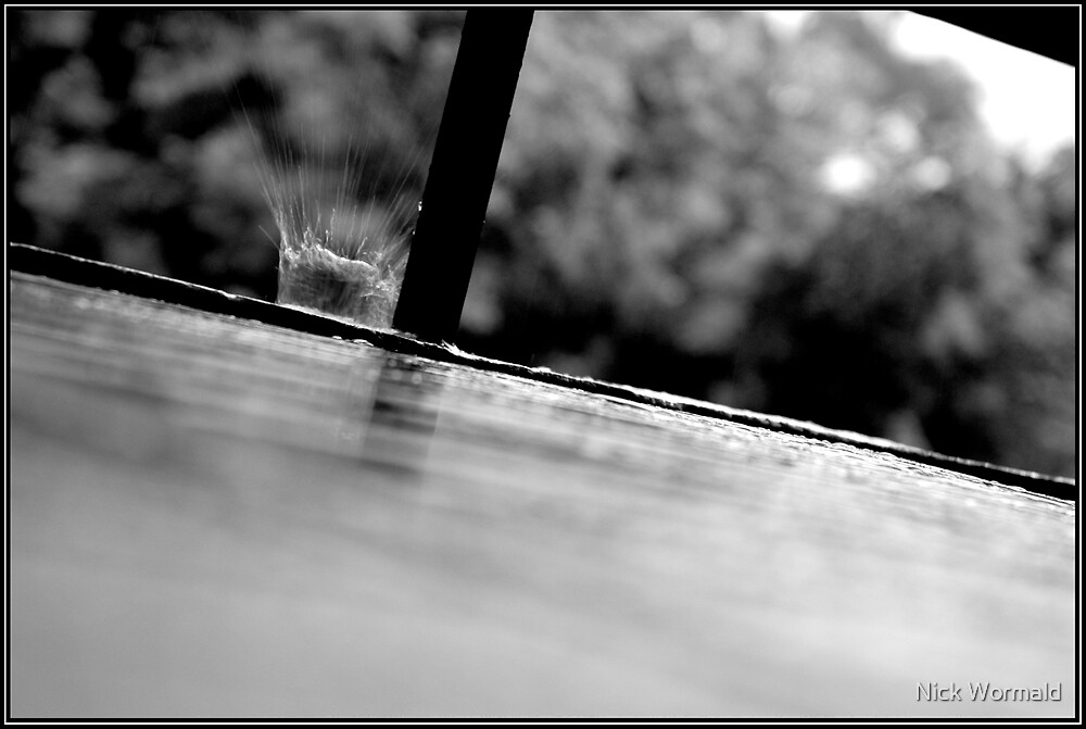 splish by Nick Wormald