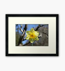Yellow Hope Framed Print