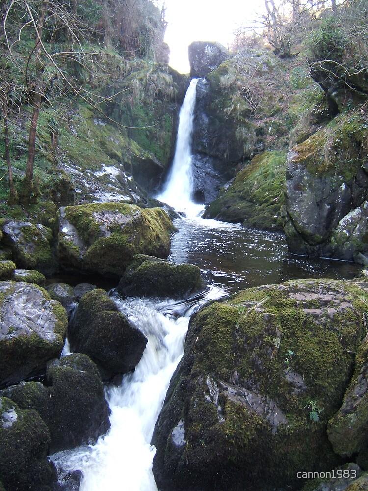 Devels Glen Waterfall in Background by cannon1983