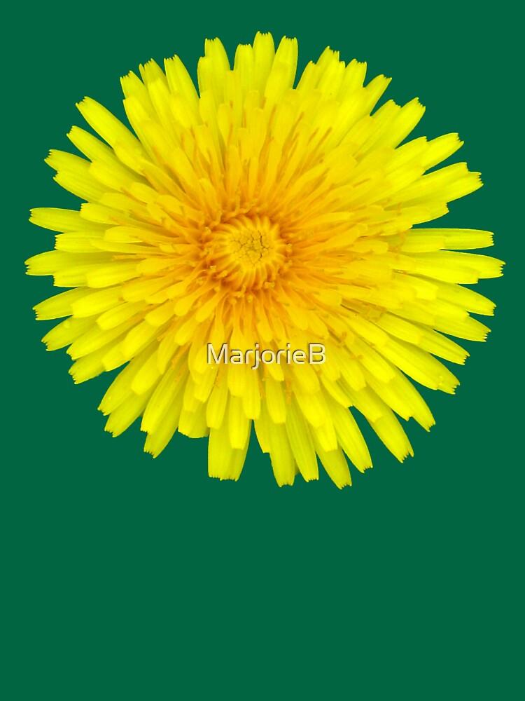 Dandelion Solo by MarjorieB