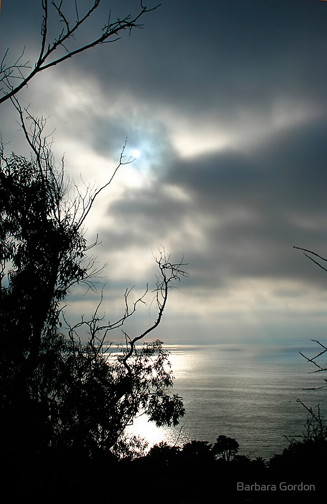 La Jolla Sunset by Barbara Gordon
