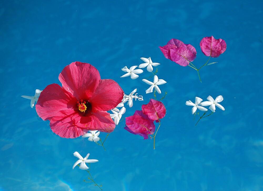 flower pool by jaffa