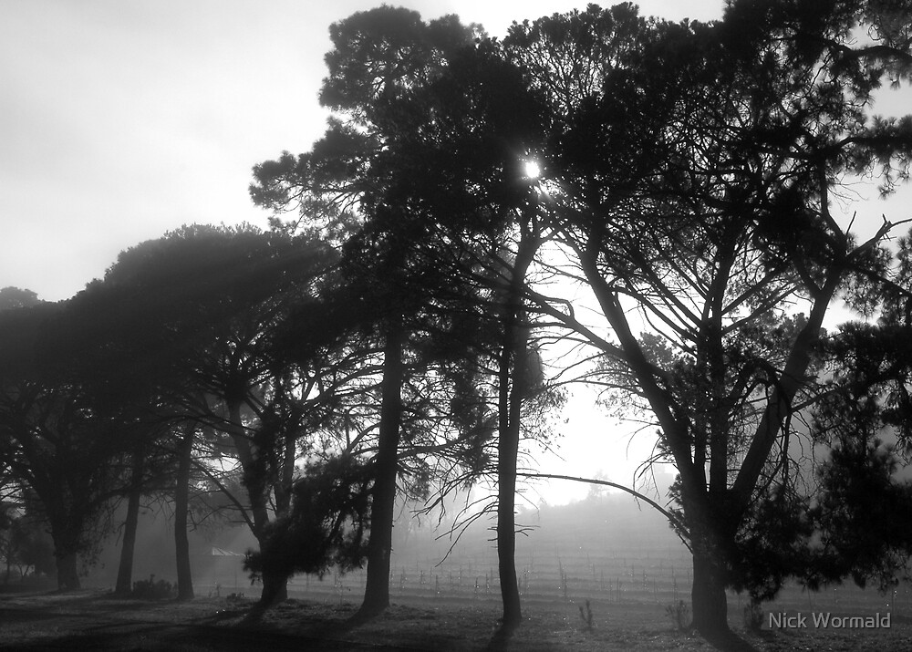 Mist Morning by Nick Wormald