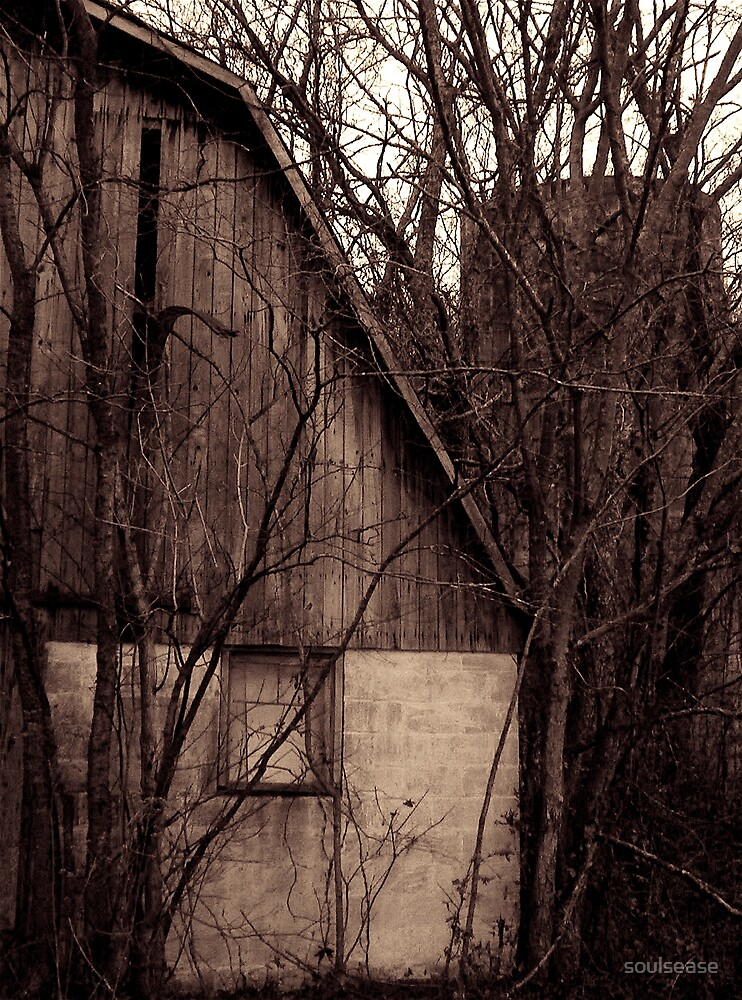 black and white barn by soulsease