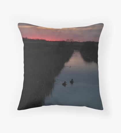 Swimming into the Sunset Throw Pillow