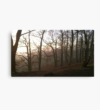 Foggy Hillside wood Canvas Print