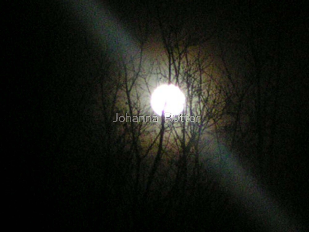 Moon With Trees by Johanna  Rutter