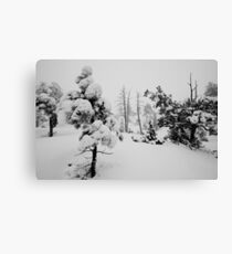 Snowstorm in the forest Canvas Print