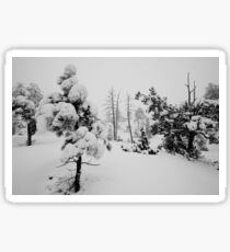 Snowstorm in the forest Sticker