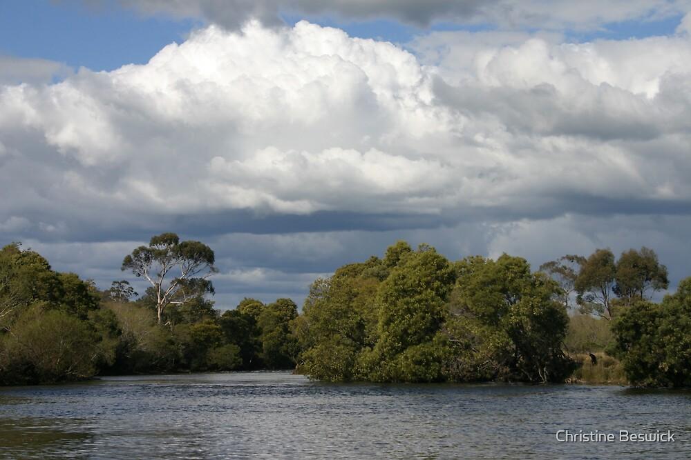 Riverscape by Christine Beswick