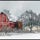 Dells Barn by Anthony Roma
