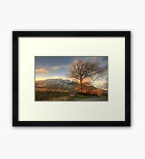 Blencathra and Tree Framed Print