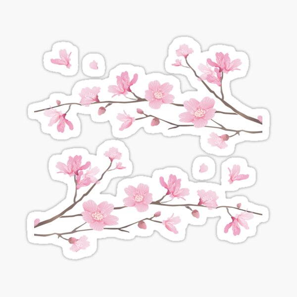 Cherry Blossom - Transparent Background Sticker