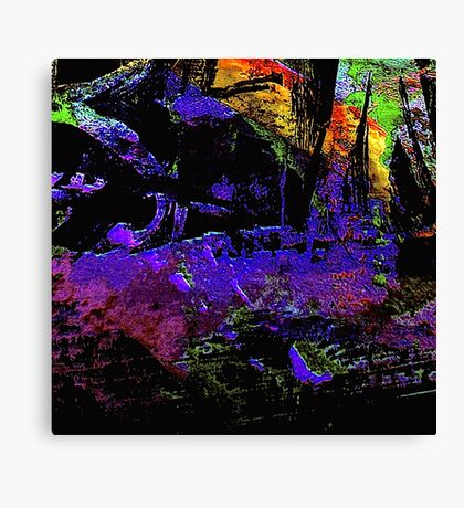 listen... everglades night sounds Canvas Print