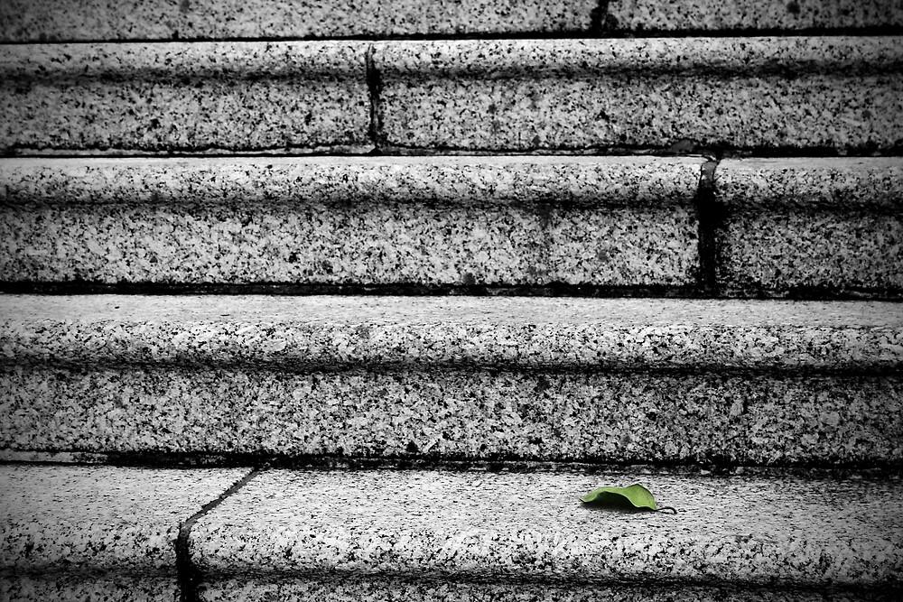 Alone by David Pearson