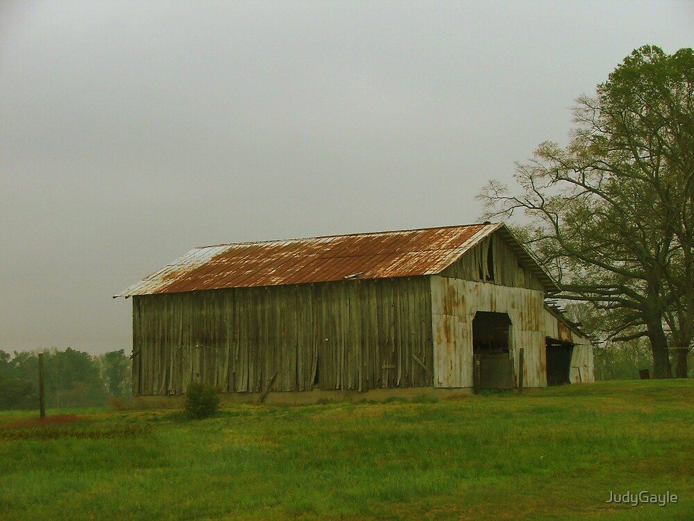 Weathered Barn by Judy Gayle Waller