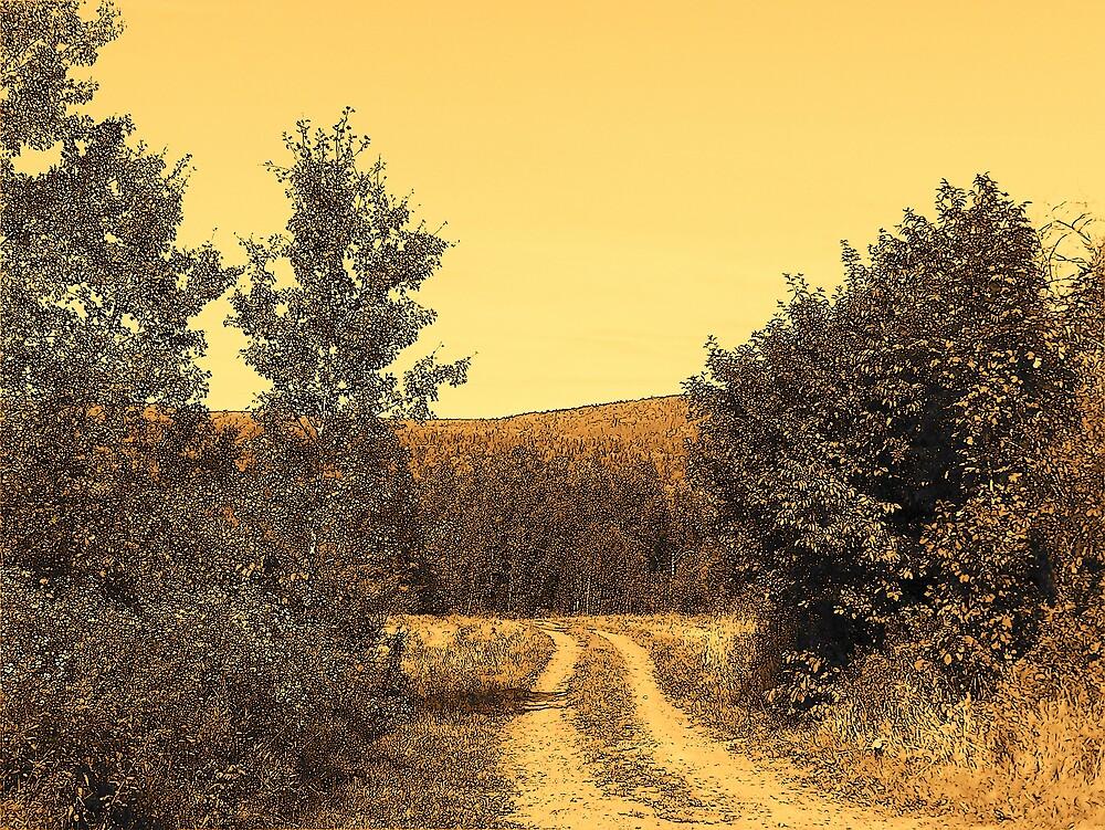 Country Road by Gene Cyr