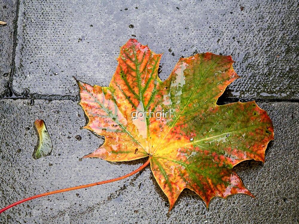 Autumn leaf by gothgirl