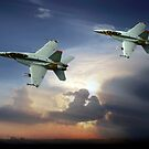 Flypass of the Hornet by Bob Martin