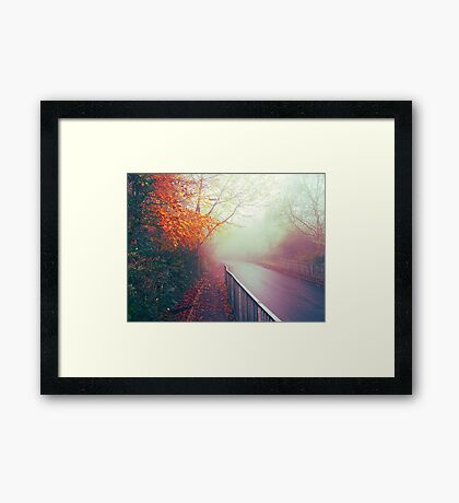 Misty Days Framed Print