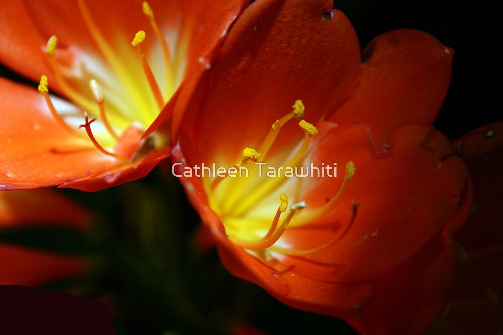 Mellow Yellow by Cathleen Tarawhiti