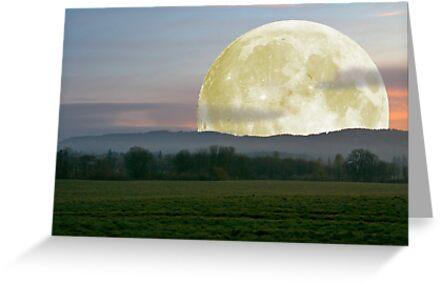 Last nights moon by Deri Dority