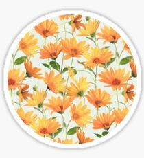 Painted Radiant Orange Daisies on off-white Sticker