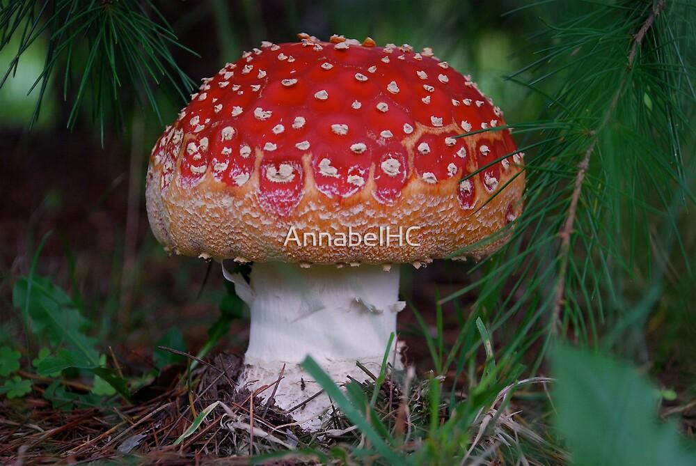 Big Red by AnnabelHC