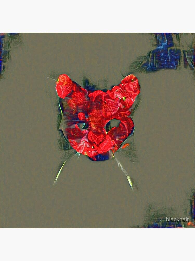 Ninja cat hiding in poppy #Art by blackhalt