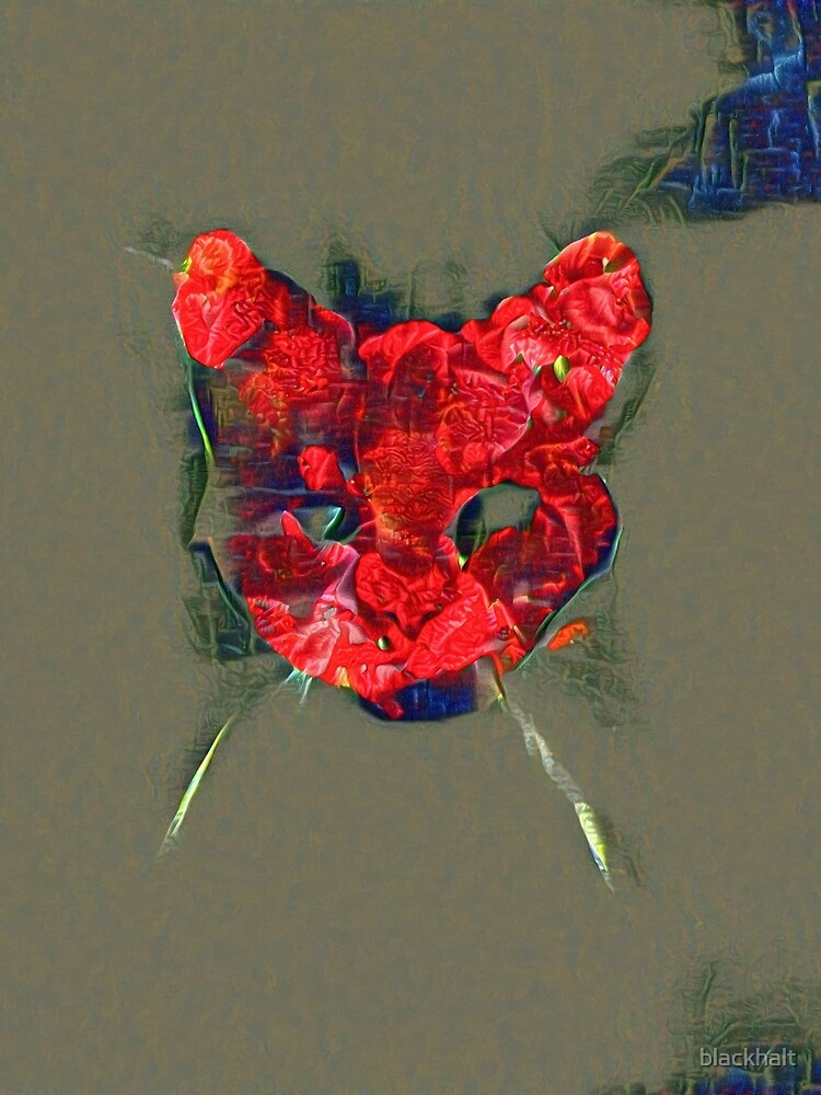 Ninja cat hiding in poppy #Art by blackhalt