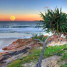 Super Moonrise at Coolum by Adam Gormley