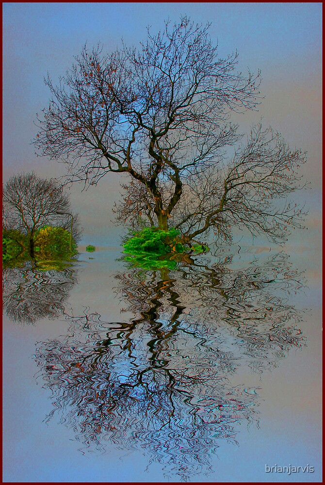 Floating Tree by brianjarvis