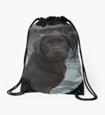 Chocolate Labrador Puppy Drawstring Bag