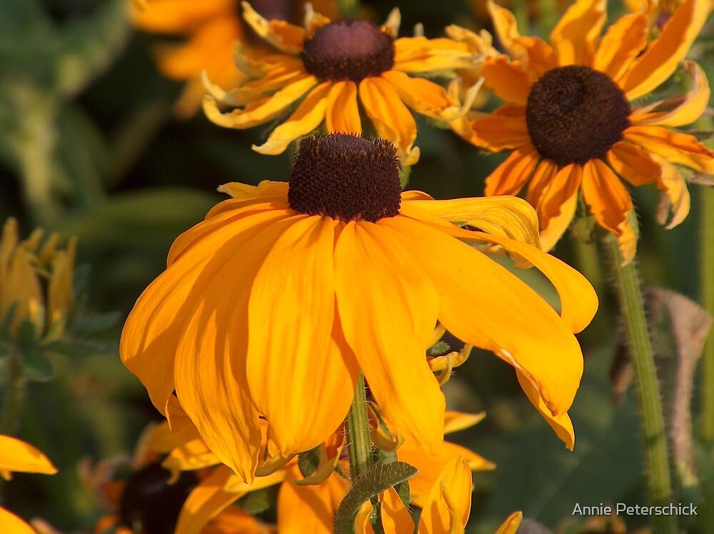 Yellow Cap by Annie Peterschick