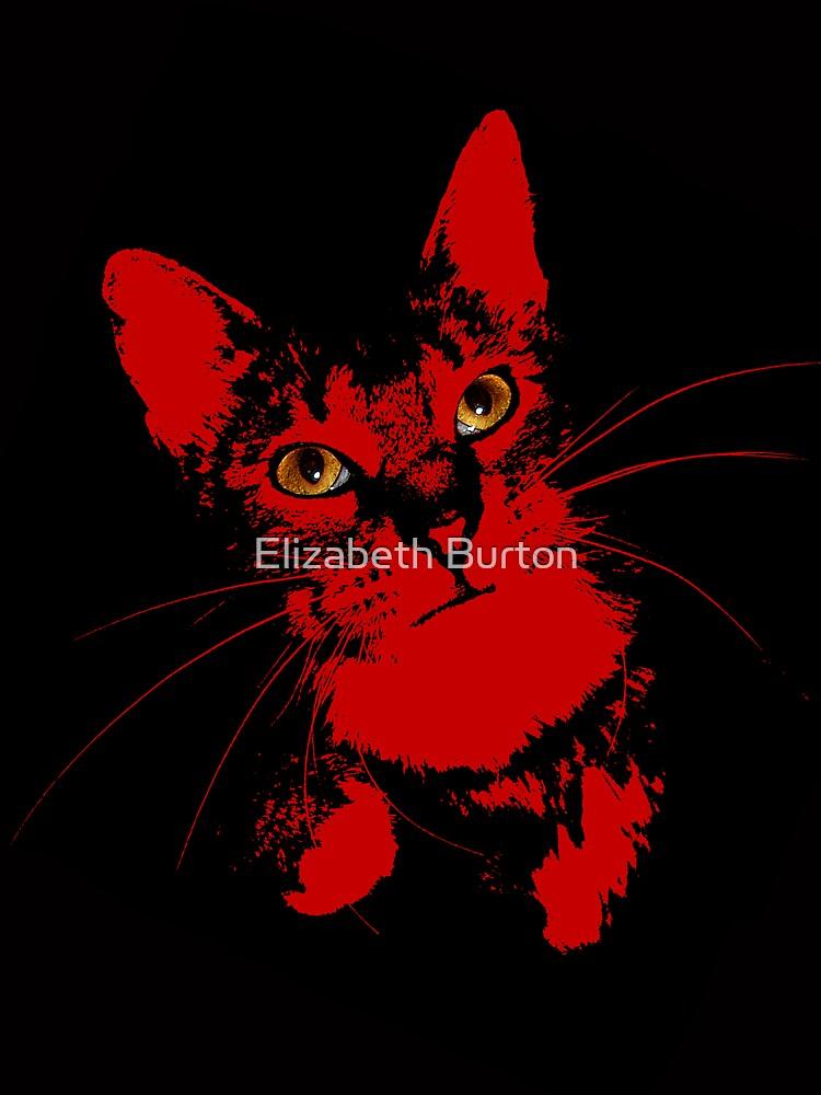Cats Eye by lizard911