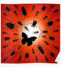 night insects Poster
