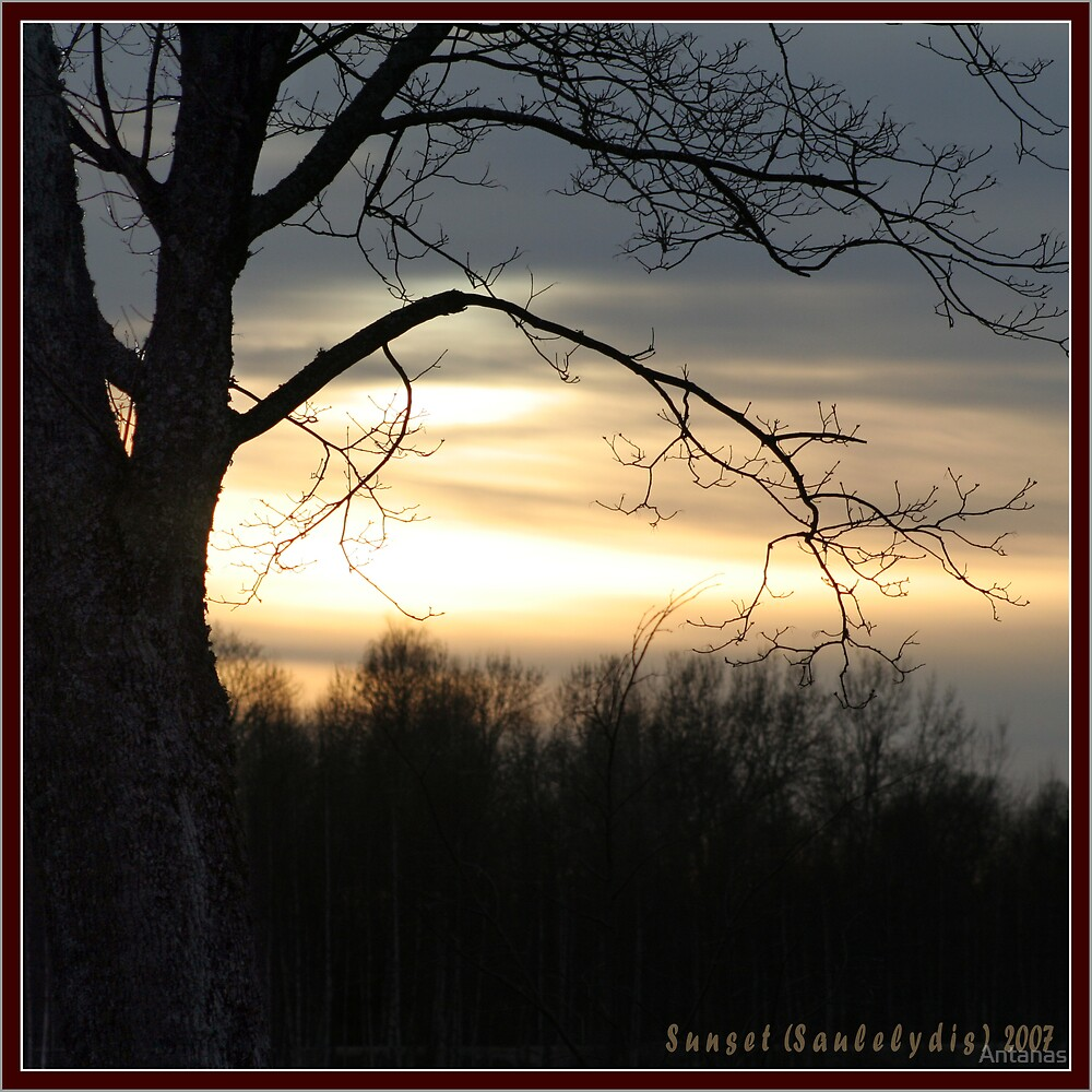 Sunset II by Antanas
